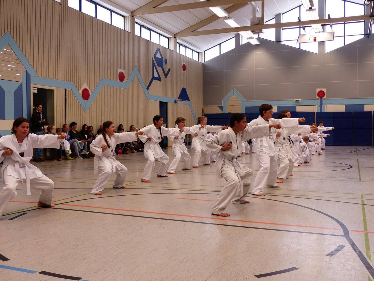 Taekwondo Eine Koreanische Sportart An Der Taunusschule